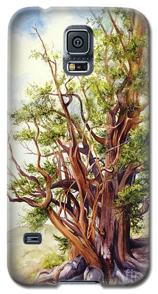 Galaxy S5 Case featuring the painting Bristle Cone Pine by Bonnie Rinier