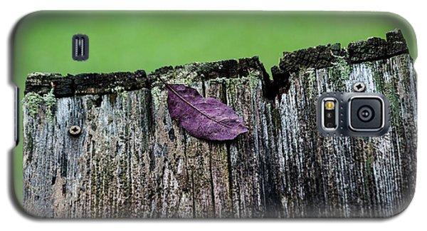 Brock's Leaf Galaxy S5 Case