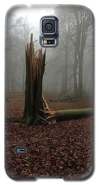 Broken Oak Galaxy S5 Case