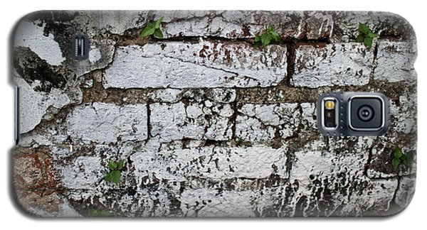 Broken Stucco Wall With Whitewashed Exposed Brick Texture And Ve Galaxy S5 Case by Jason Rosette