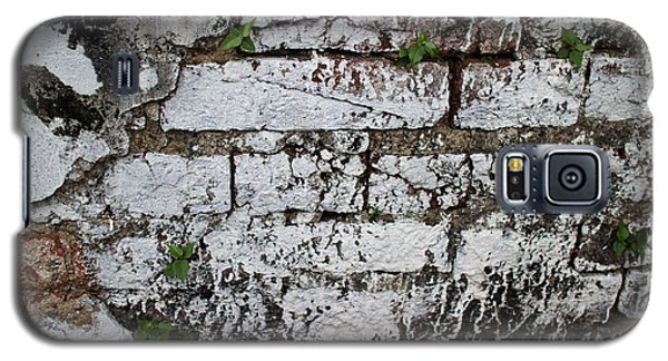 Broken Stucco Wall With Whitewashed Exposed Brick Texture And Ve Galaxy S5 Case
