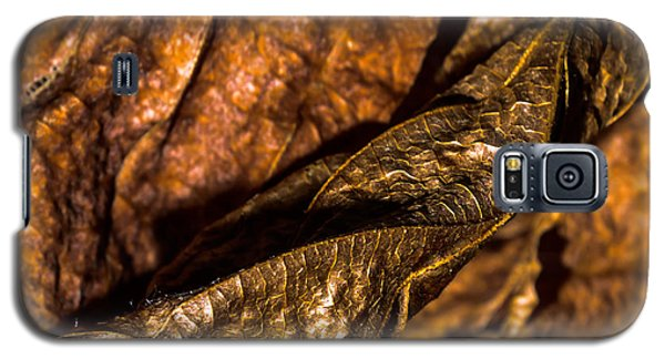 Bronze Leaves Galaxy S5 Case