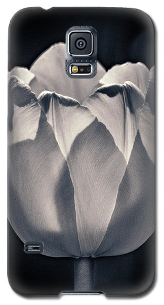 Galaxy S5 Case featuring the photograph Brooding Virtue by Bill Pevlor