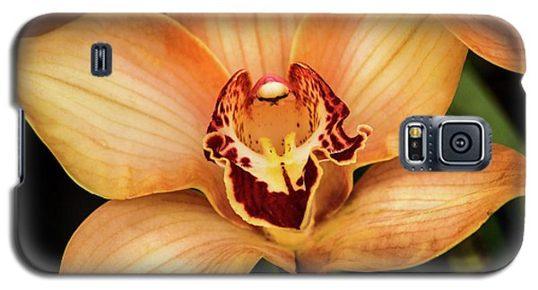 Brookside Orchid Galaxy S5 Case