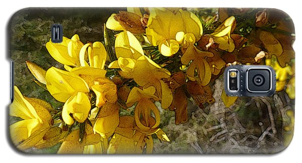 Broom In Bloom Galaxy S5 Case by Jean Bernard Roussilhe