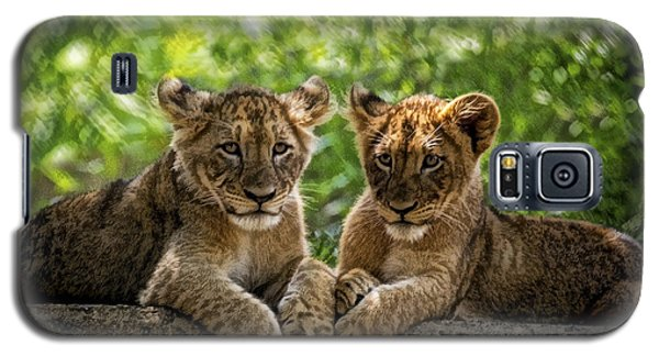 Galaxy S5 Case featuring the photograph Brothers Chillin by Cheri McEachin