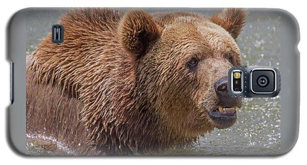 Brown Bear 10 Galaxy S5 Case