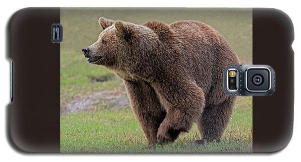 Brown Bear 14.5 Galaxy S5 Case