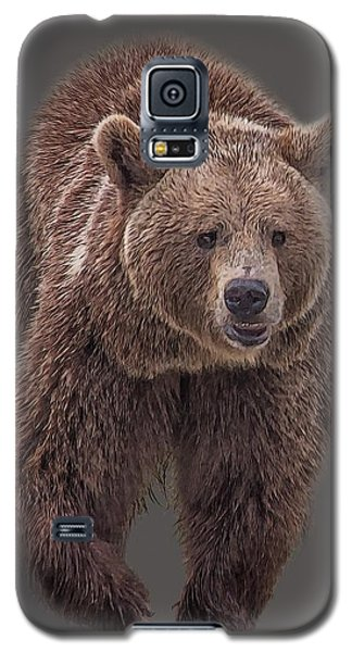 Brown Bear 8   Galaxy S5 Case