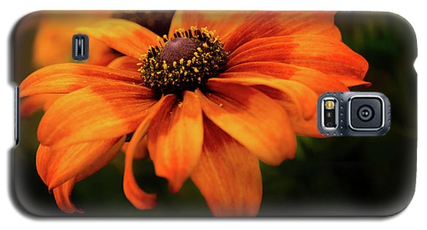 Galaxy S5 Case featuring the photograph Brown Eyed Susan by Mary Jo Allen