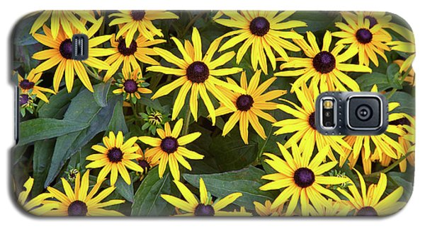 Brown Eyes On The Greenway Galaxy S5 Case