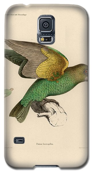 Brown-headed Parrot, Piocephalus Cryptoxanthus Galaxy S5 Case