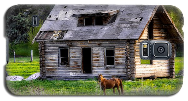 Brown Horse And Old Log Cabin Galaxy S5 Case