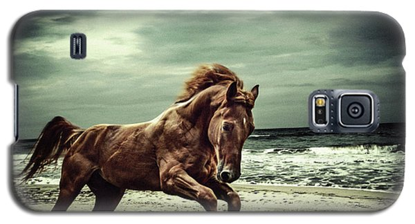 Brown Horse Galloping On The Coastline Galaxy S5 Case