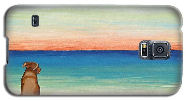 Brown Lab Dog On The Beach Galaxy S5 Case