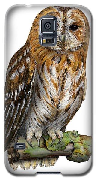 Brown Owl Or Eurasian Tawny Owl  Strix Aluco - Chouette Hulotte - Carabo Comun -  Nationalpark Eifel Galaxy S5 Case