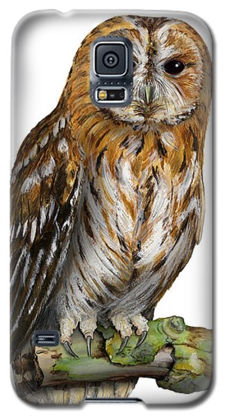 Brown Owl Or Eurasian Tawny Owl  Strix Aluco - Chouette Hulotte - Carabo Comun -  Nationalpark Eifel Galaxy S5 Case