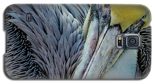Galaxy S5 Case featuring the photograph Brown Pelican by Bill Gallagher