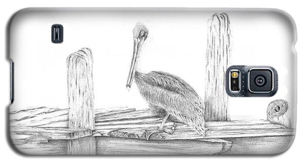 Brown Pelican Galaxy S5 Case by Patricia Hiltz
