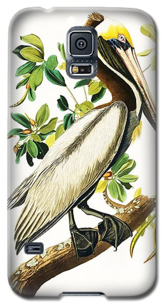 Audubon Galaxy S5 Case - Brown Pelican by Pg Reproductions