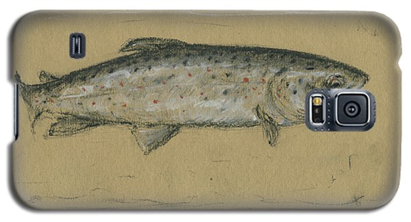 Trout Galaxy S5 Case - Brown Trout by Juan Bosco
