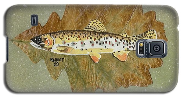 Brown Trout Galaxy S5 Case by Ralph Root