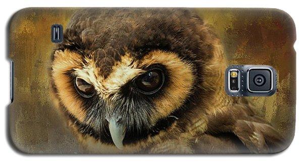 Brown Wood Owl Galaxy S5 Case