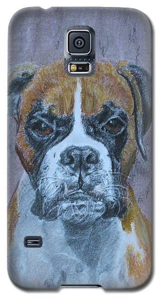 Bruce Galaxy S5 Case