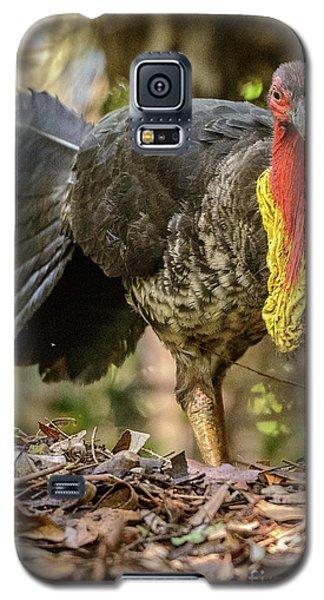 Brush Turkey Galaxy S5 Case