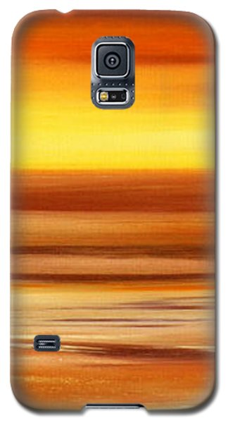 Brushed 3 Galaxy S5 Case
