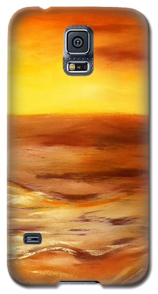 Brushed 5 - Vertical Sunset Galaxy S5 Case