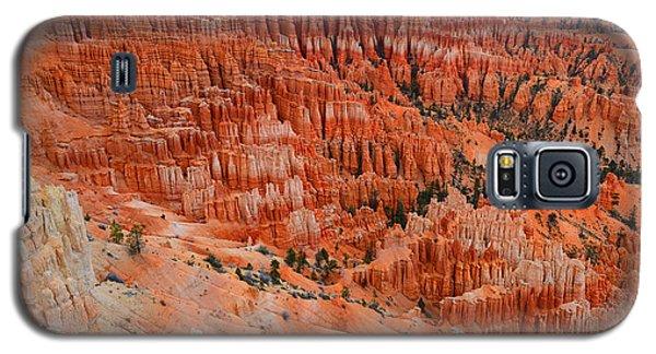 Bryce Canyon Megapixels Galaxy S5 Case