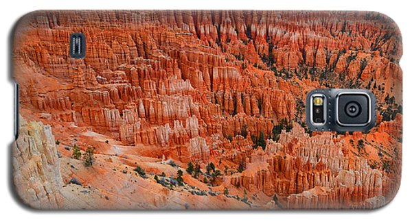 Bryce Canyon Megapixels Galaxy S5 Case