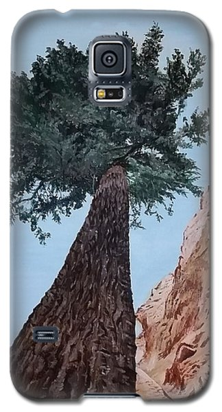 Bryce Pine Galaxy S5 Case