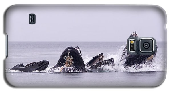 Bubble Feeding Humpbacks Galaxy S5 Case by Darcy Michaelchuk