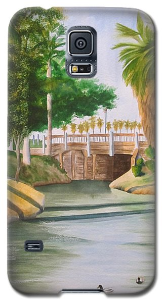 Bubbling Springs Park Galaxy S5 Case