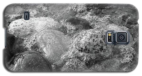 Bubbling Stones Galaxy S5 Case