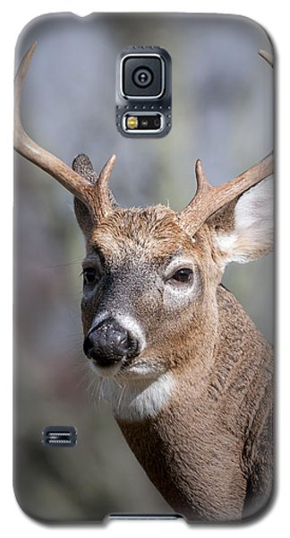 Galaxy S5 Case featuring the photograph Buck Headshot by Tyson and Kathy Smith