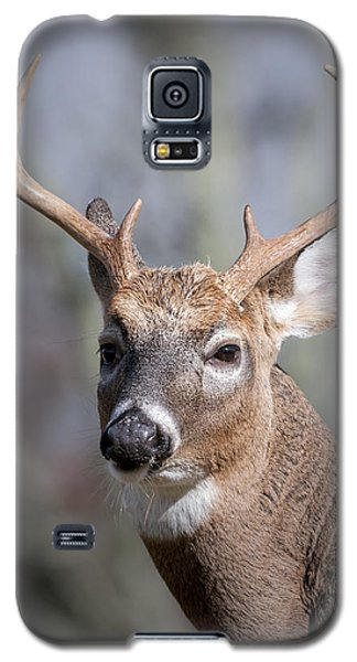 Buck Headshot Galaxy S5 Case