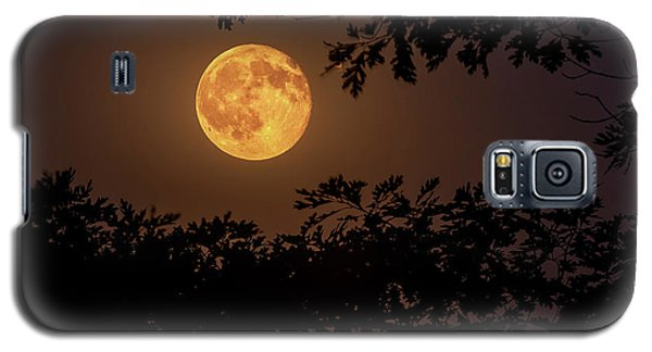 Galaxy S5 Case featuring the photograph Buck Moon 2016 by Everet Regal