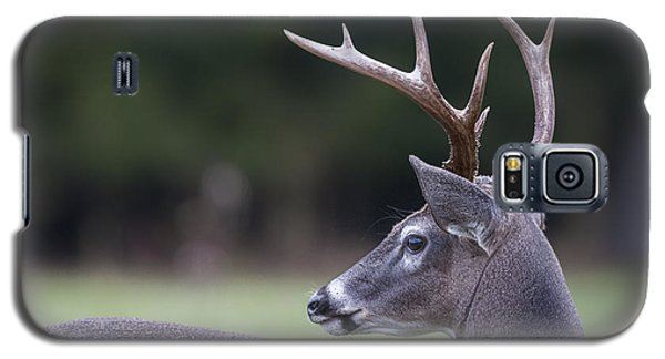 Galaxy S5 Case featuring the photograph Buck by Tyson and Kathy Smith