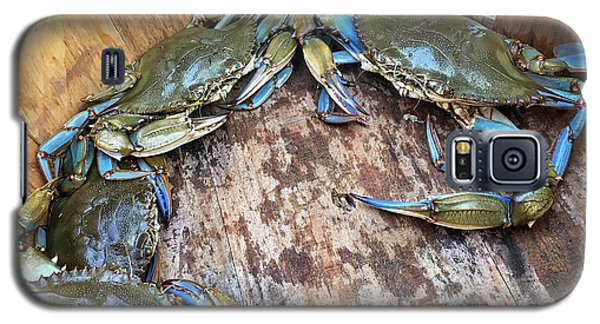 Galaxy S5 Case featuring the photograph Bucket Of Blue Crabs by Jennifer Casey
