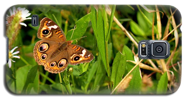 Galaxy S5 Case featuring the photograph Buckeye Butterfly In Nature by Rosalie Scanlon
