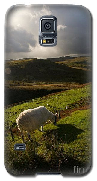 Galaxy S5 Case featuring the painting Bucolic Scotland by Louise Fahy