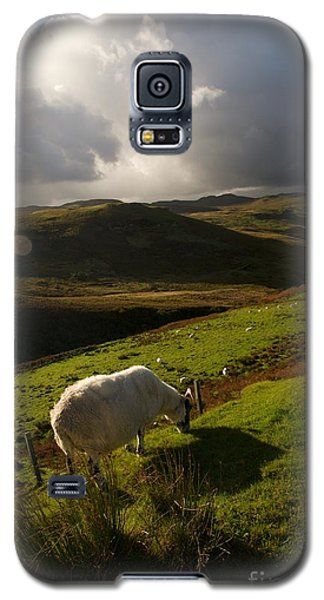 Bucolic Scotland Galaxy S5 Case
