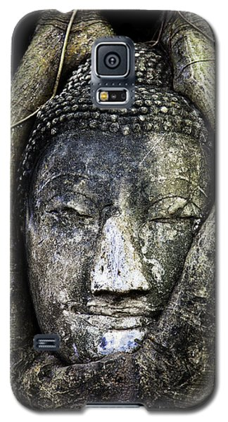 Buddha Head In Banyan Tree Galaxy S5 Case