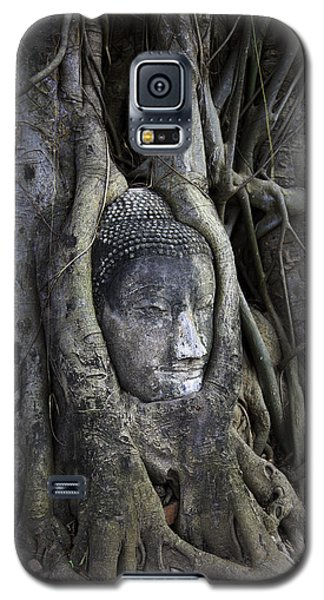 Buddha Head In Tree Galaxy S5 Case