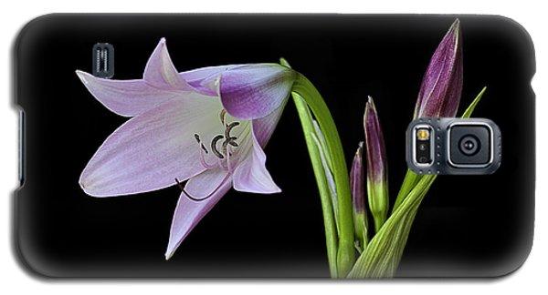 Budding Lily Galaxy S5 Case