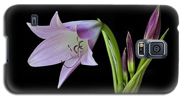 Budding Lily Galaxy S5 Case