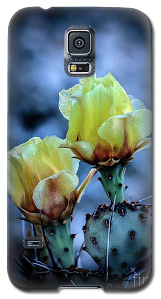 Galaxy S5 Case featuring the photograph Budding Prickly Pear Cactus by Robert Bales